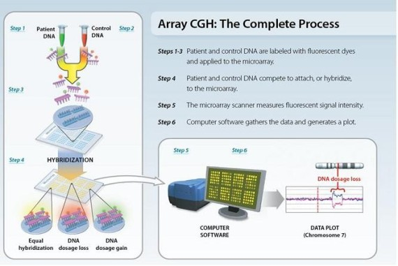 array, cgh, process cgh